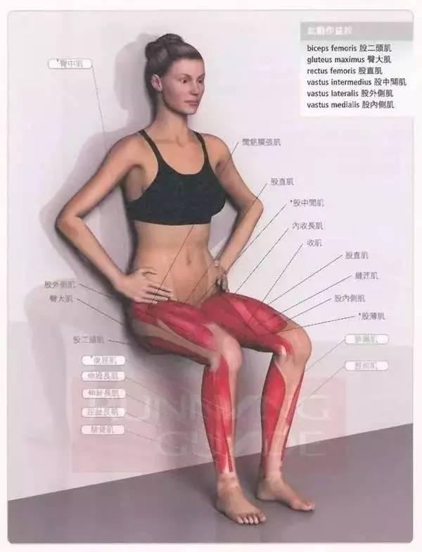 交叉韧带损伤恢复锻炼有哪些?