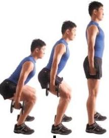 前交叉韧带重建后康复——开链运动与闭链运动
