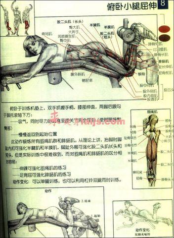 前交叉韧带康复训练之健身房