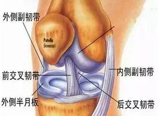 膝关节术后康复的雷区,小心踩到!